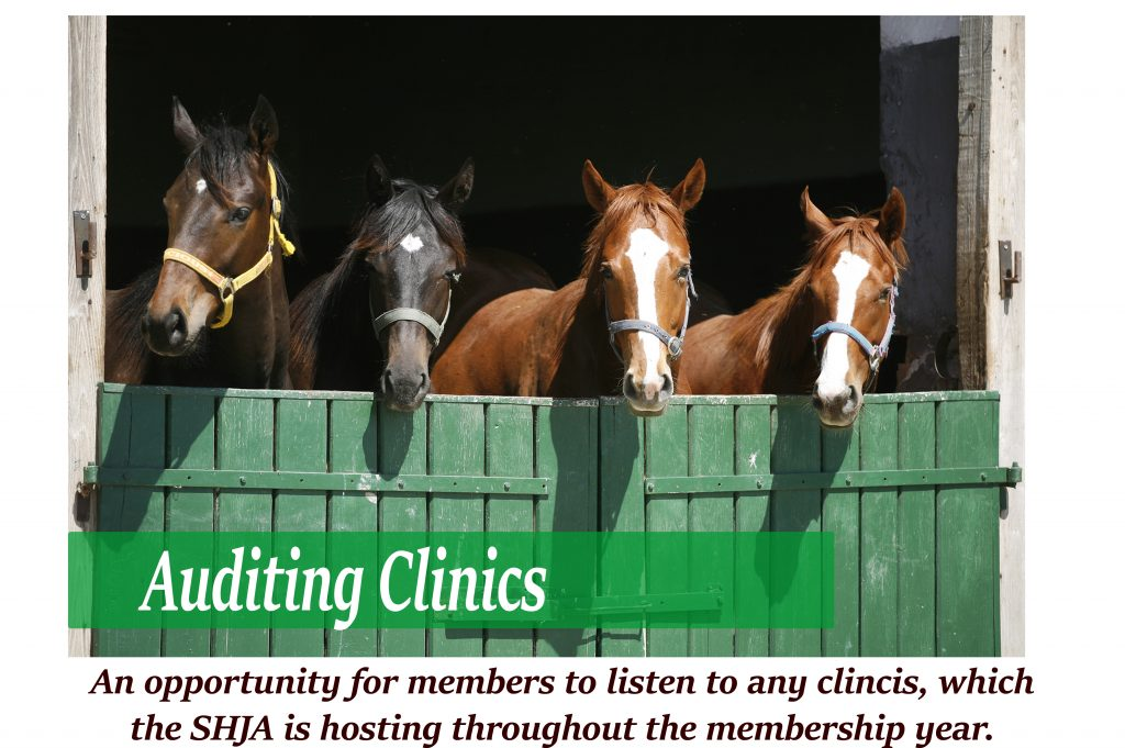 SHJA Auditing Clinics